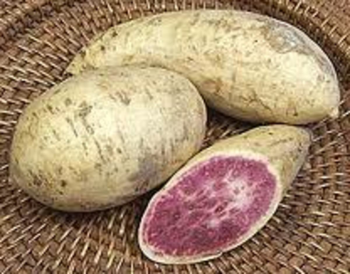 Purple or Violet Yams; try the  Ice Cream