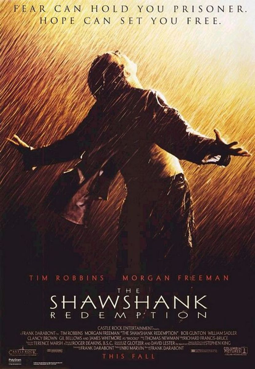The Shawshank Redemption: Friendship in Adversity