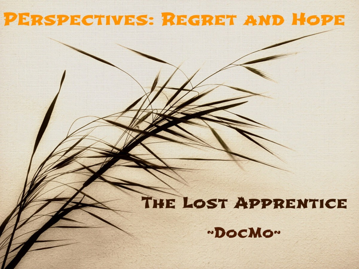 Regret and Hope ~ The Lost Apprentice