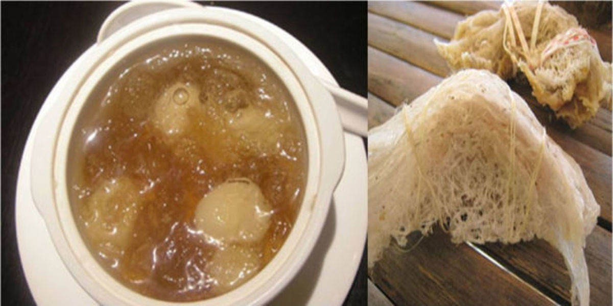 Birds Nest Soup, China  -The saliva of the birds give this soup its unicity. It is one of the most expensive products consumed by humans, because of the difficulty in getting it.