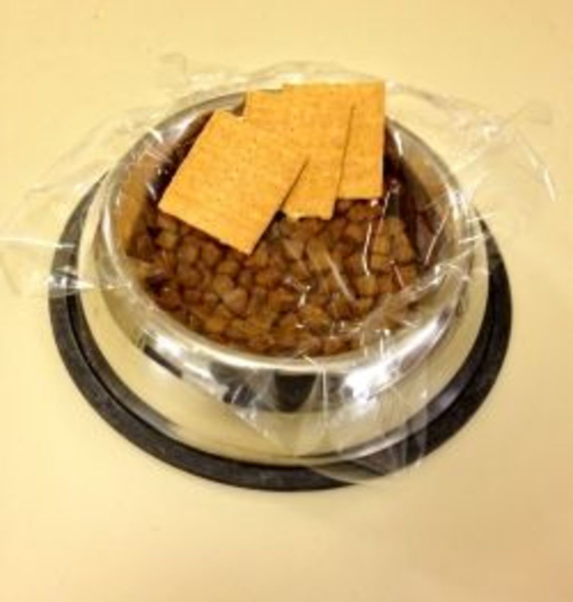 Eat crackers out of your dog's dish!