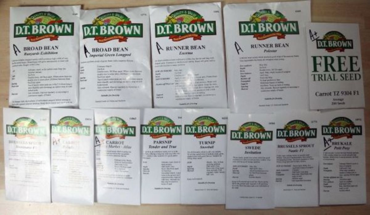 New packets of vegetable seeds
