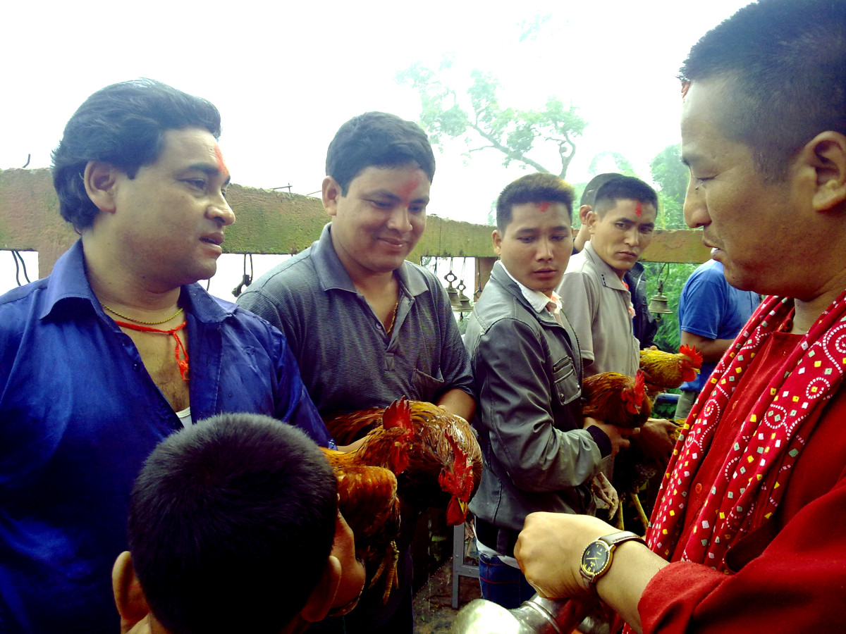 Priest anointing fowls that will be sacrificed in the Goddess temple