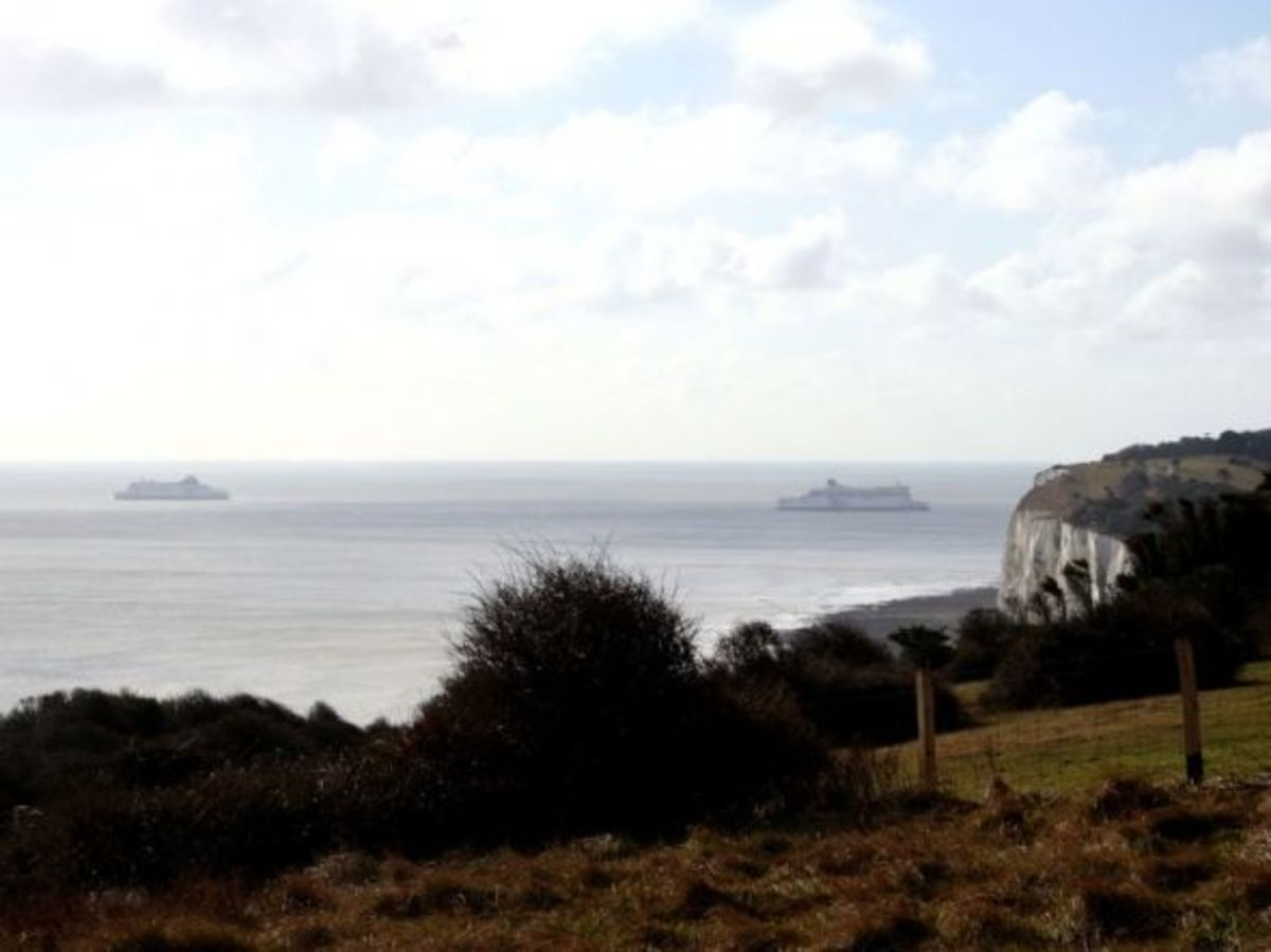 The view from the top of the White Cliffs