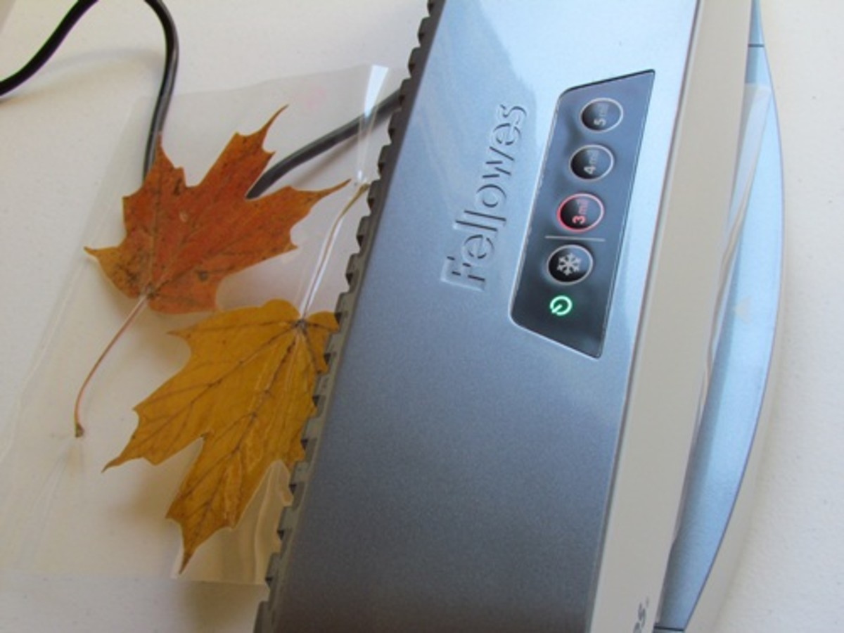 Laminating Autumn leaves
