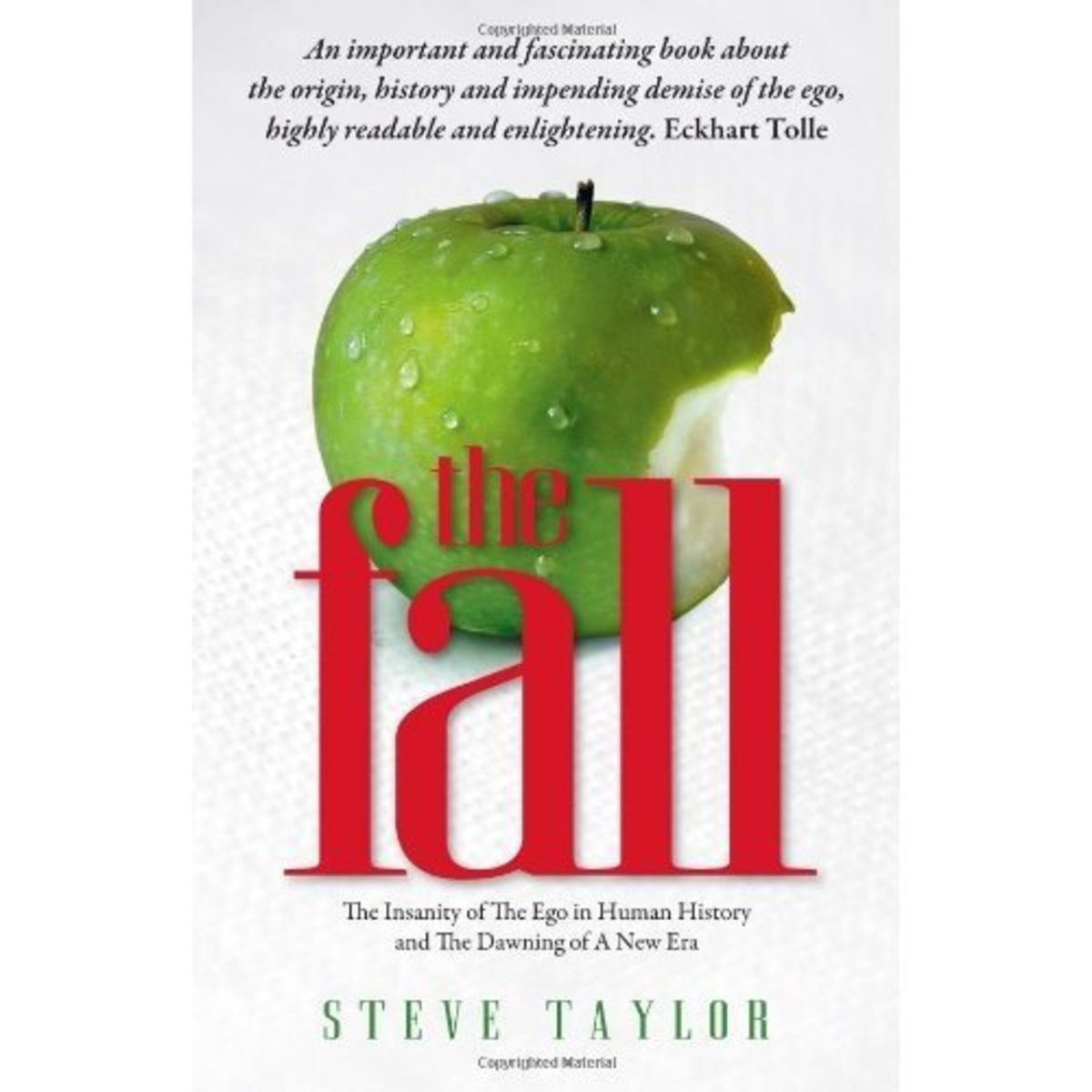 'The Fall: The Insanity of the Ego in Human History and the Dawning of A New Era' by Steve Taylor