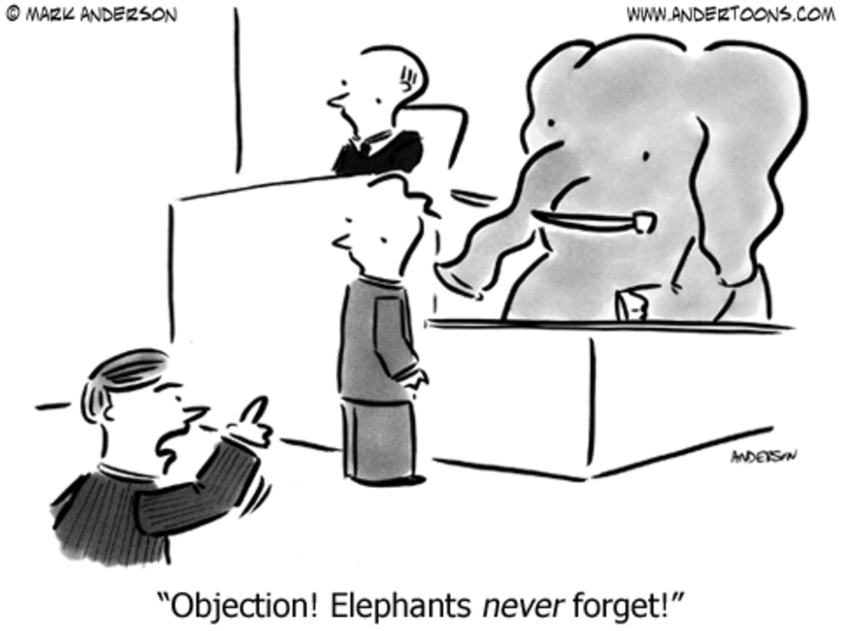 Objection Examples