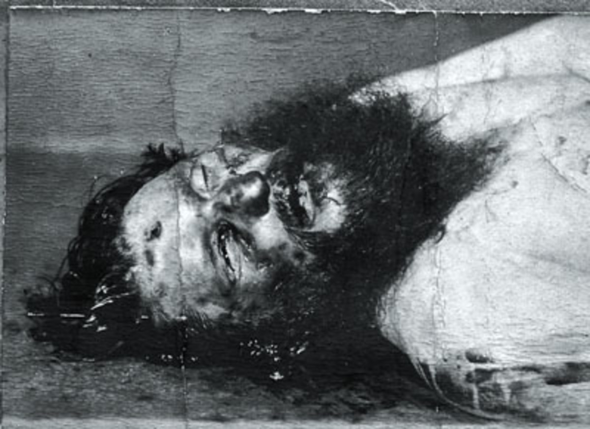 Rasputin was shot in the head by someone using a British revolver.