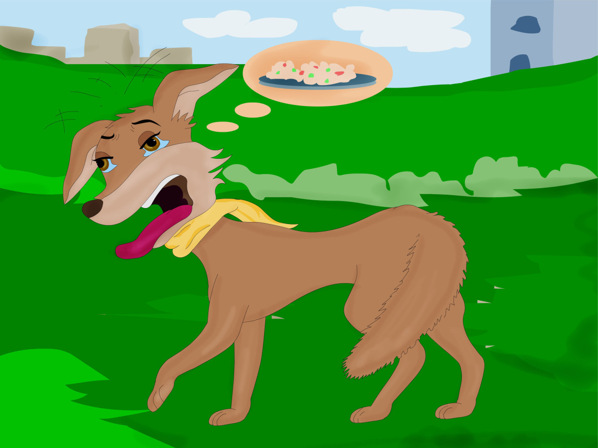short animal stories for kids the blue jackal story with