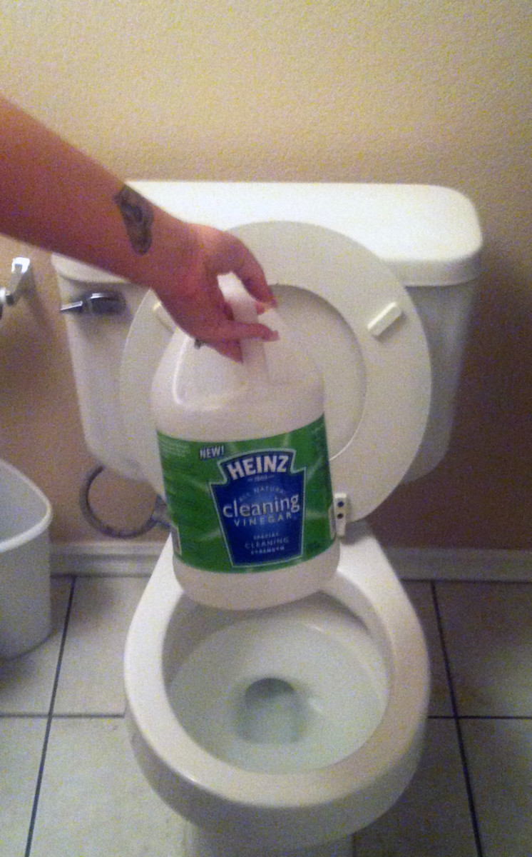 cleaning toilets with vinegar