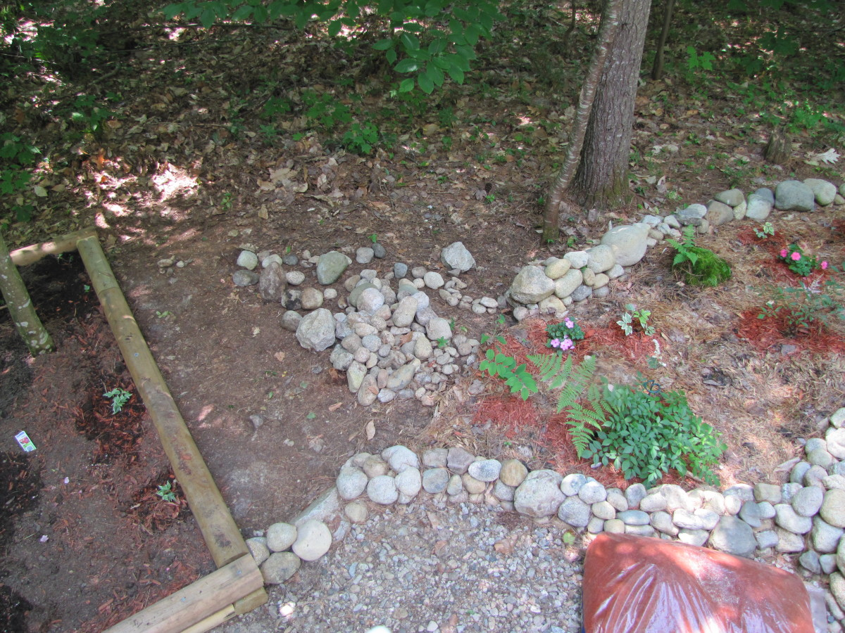Curving the wall to go around a tree. It will stop at the wooden raised bed.