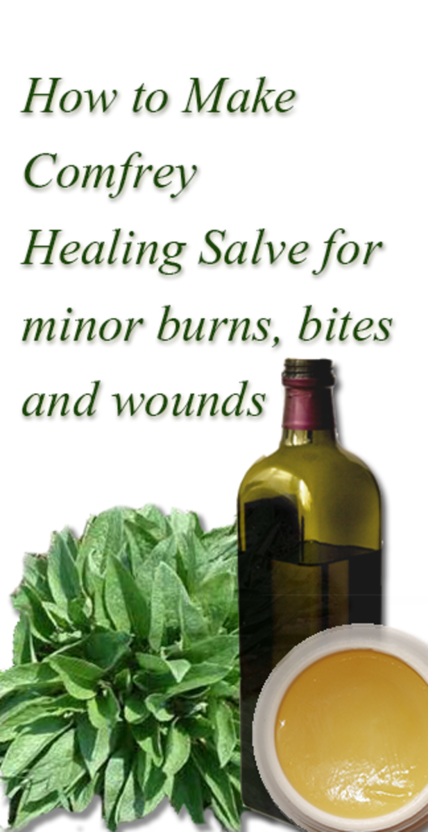 How to make healing Comfrey salve