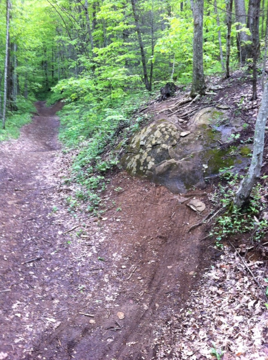 Bear Pen is one of a half dozen or so trails available to mountain bikers, just be careful of horses and people that may be coming the other way.