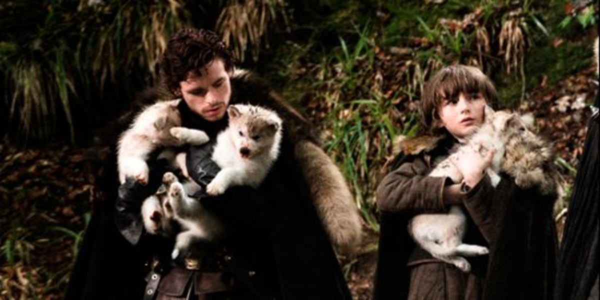 Direwolf pups found