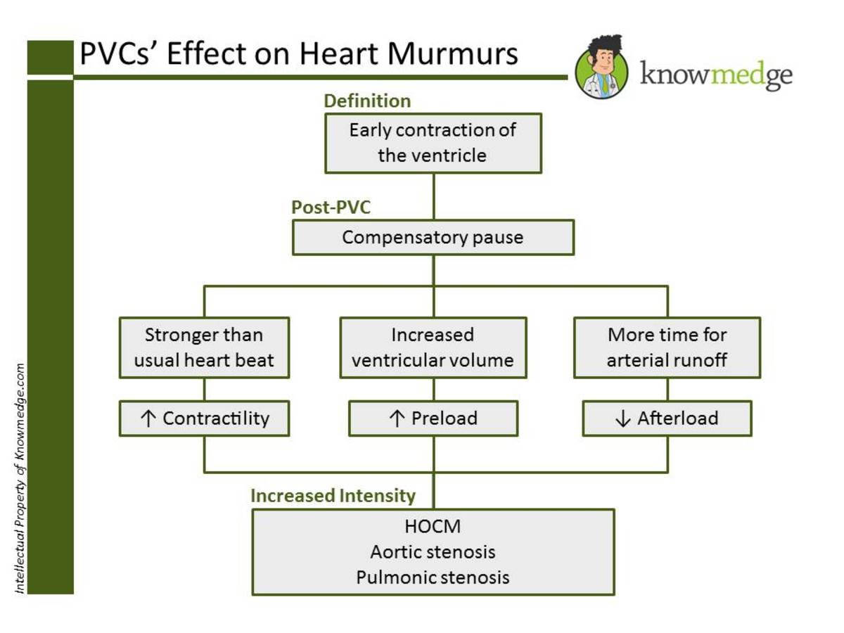 Heart murmurs for the ABIM Internal Medicine exam: Impact of premature ventricular complexes (PVCs)