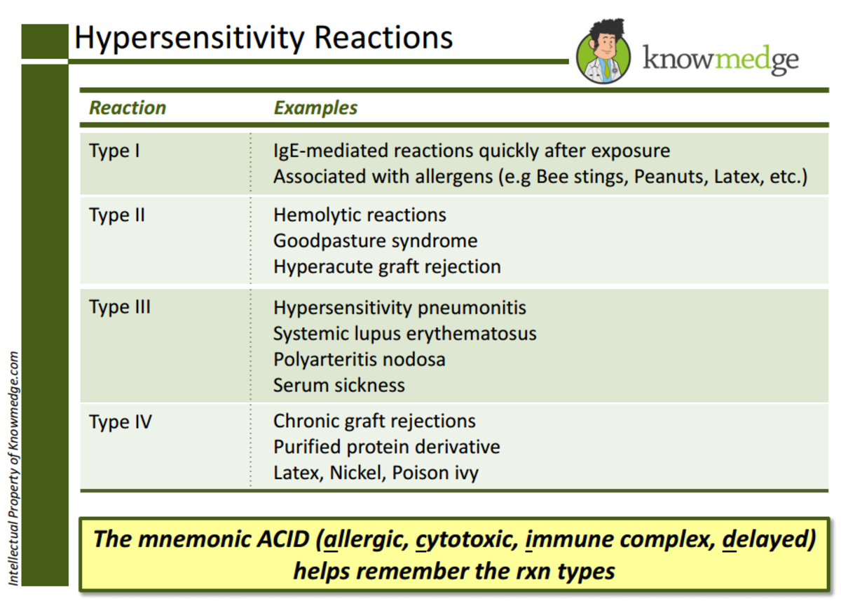 ABIM Board Exam Review: This is a slide about the various types of hypersensitivity reactions