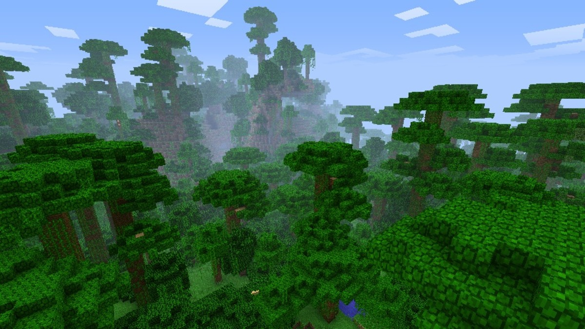 Mincraft Jungle seeds are a great way to get lost for hours... literally.