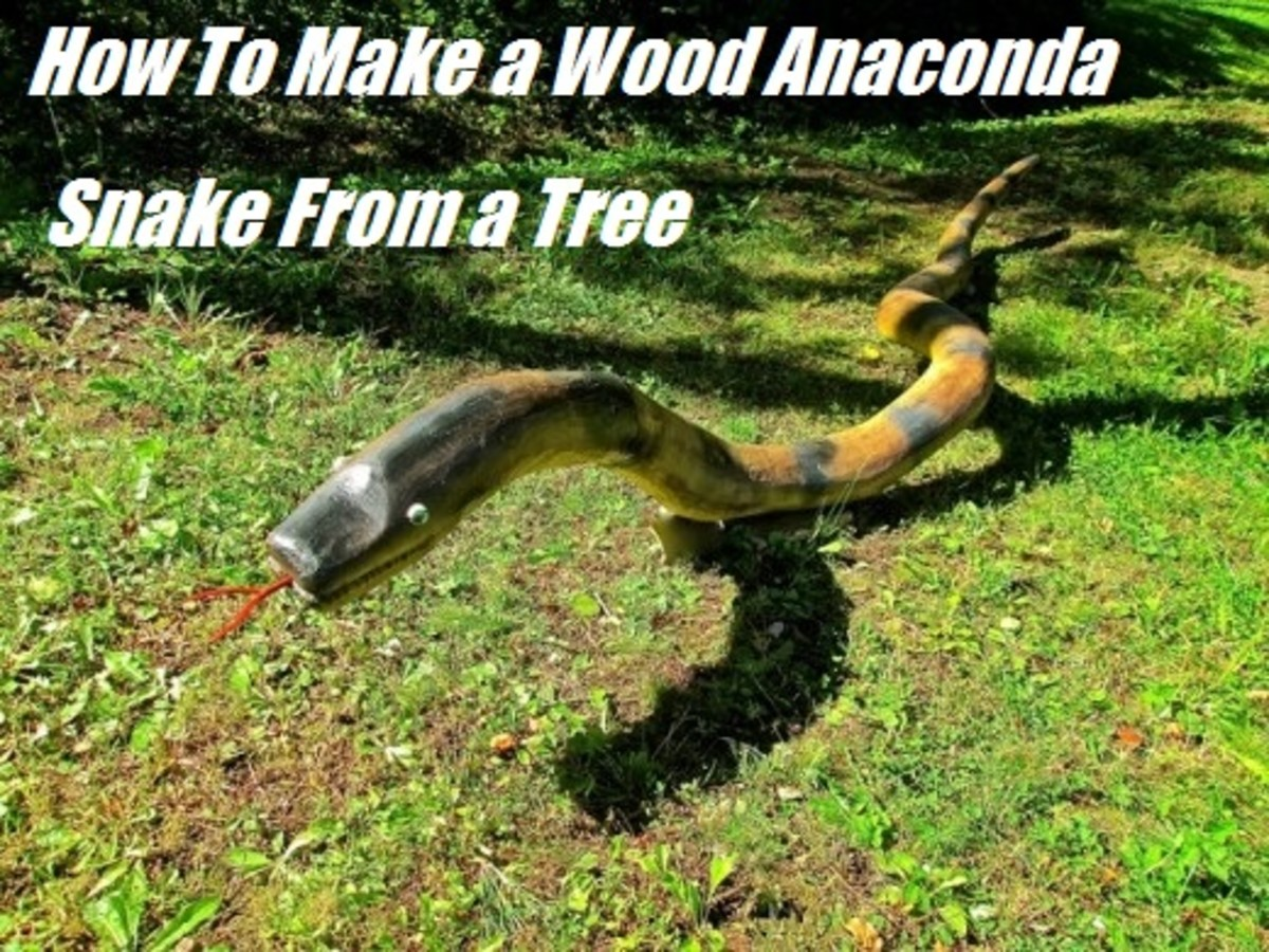 How To Make Wood Anaconda Snakes from a Tree
