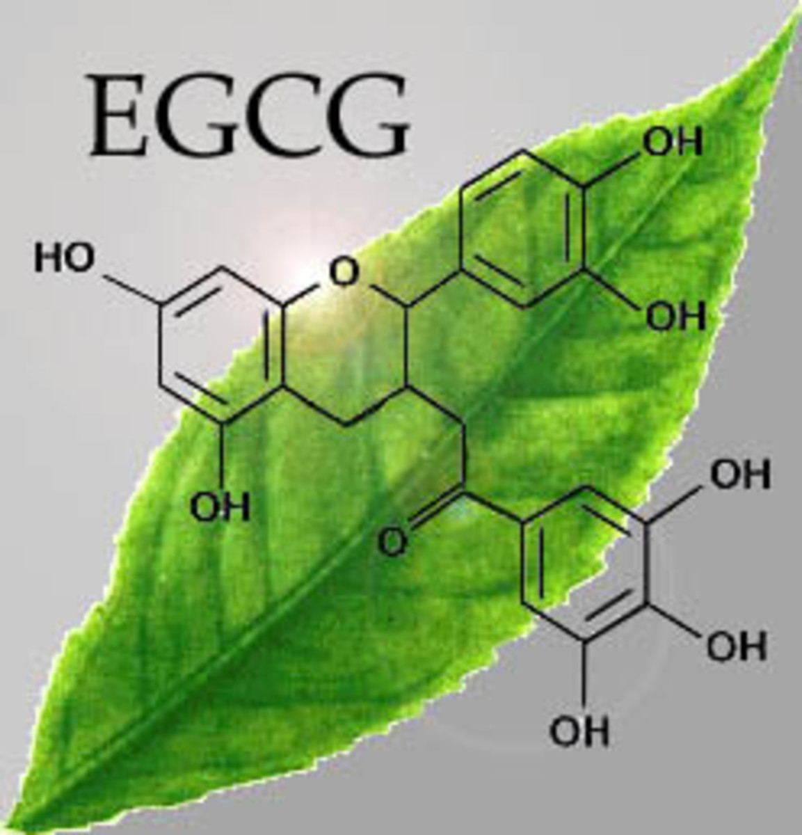 The EGCG + EC stack