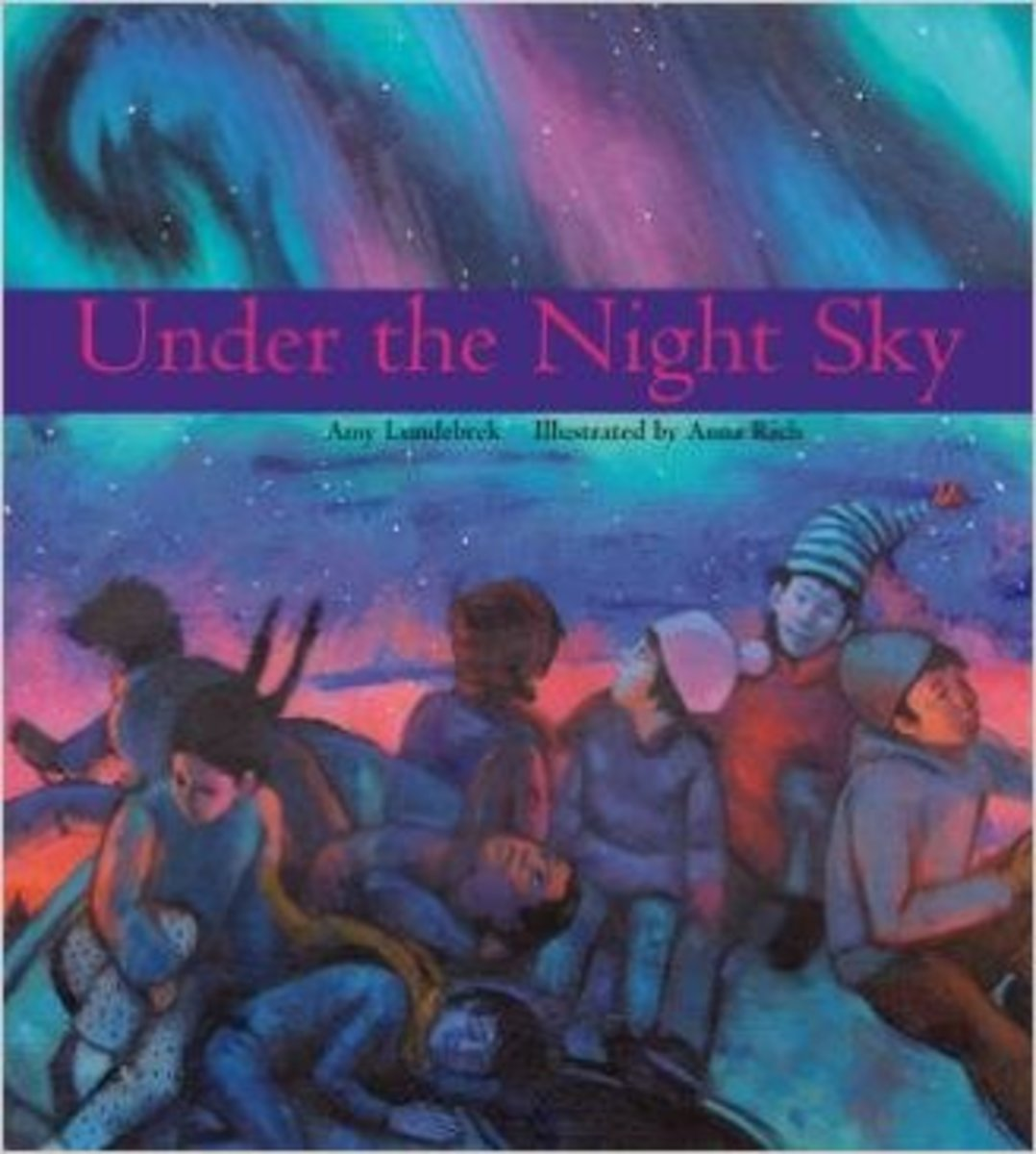 Under the Night Sky by Amy Lundebrek  - Image is from amazon.com
