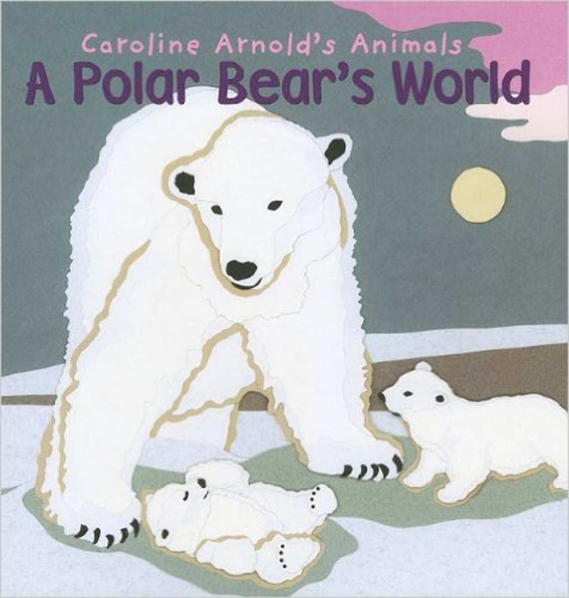 A Polar Bear's World (Caroline Arnold's Animals) by Caroline Arnold - Image is from amazon.com
