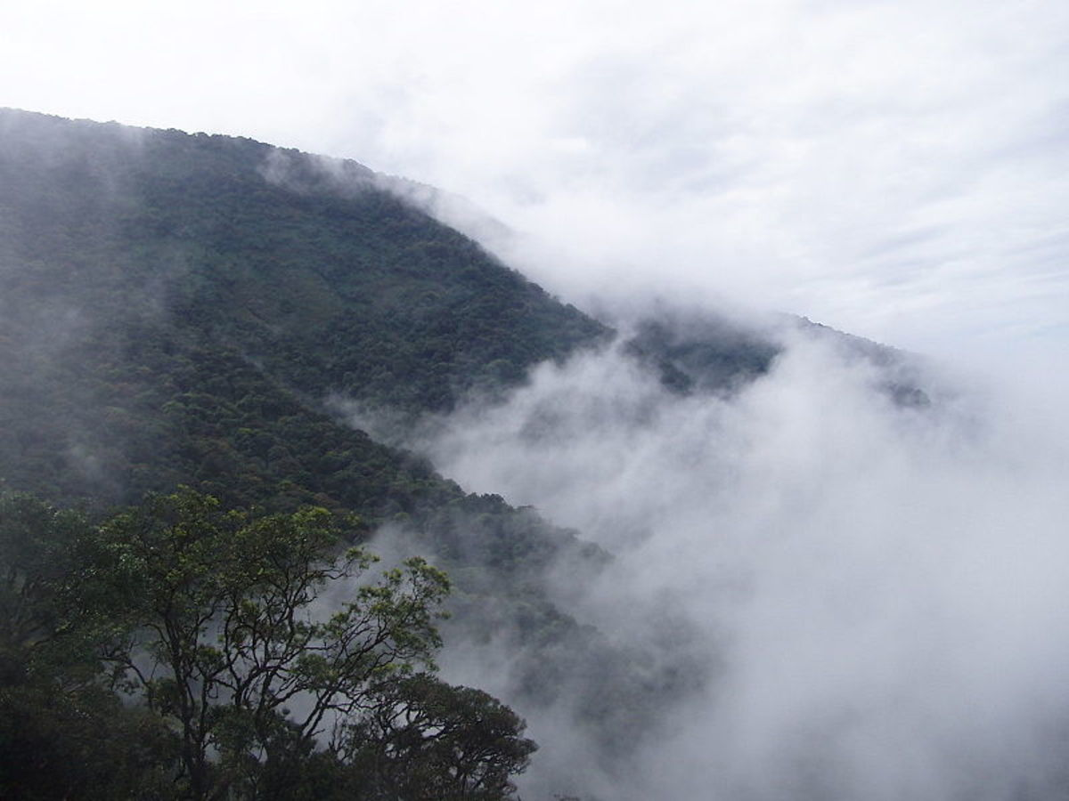 Vythiri Hill Station, Kerala
