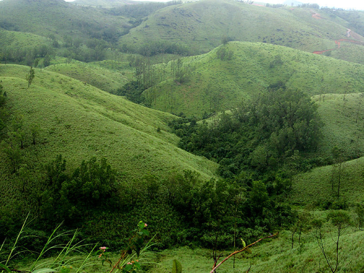 Vagamon Hill Station, Kerala