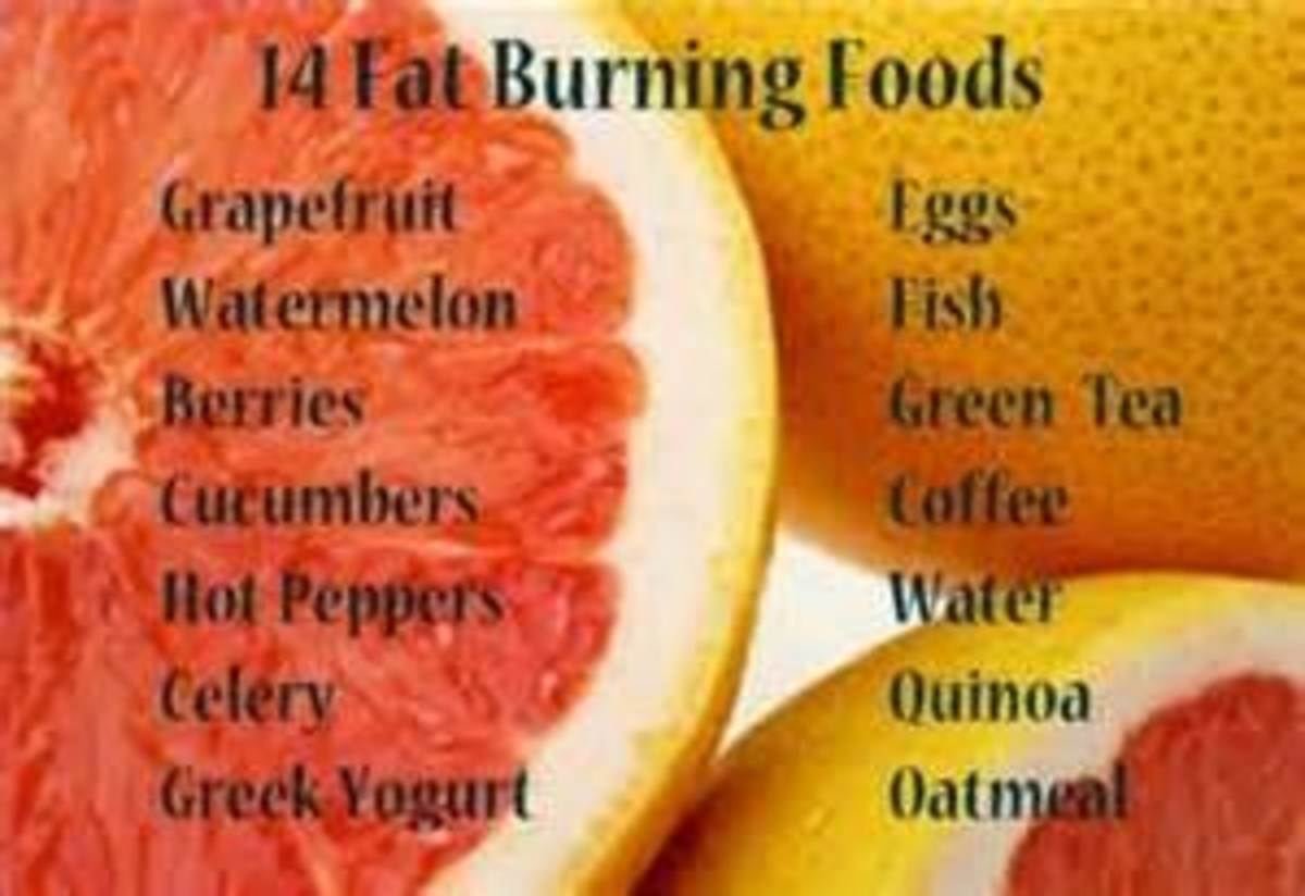 learning-to-burn-fat-faster