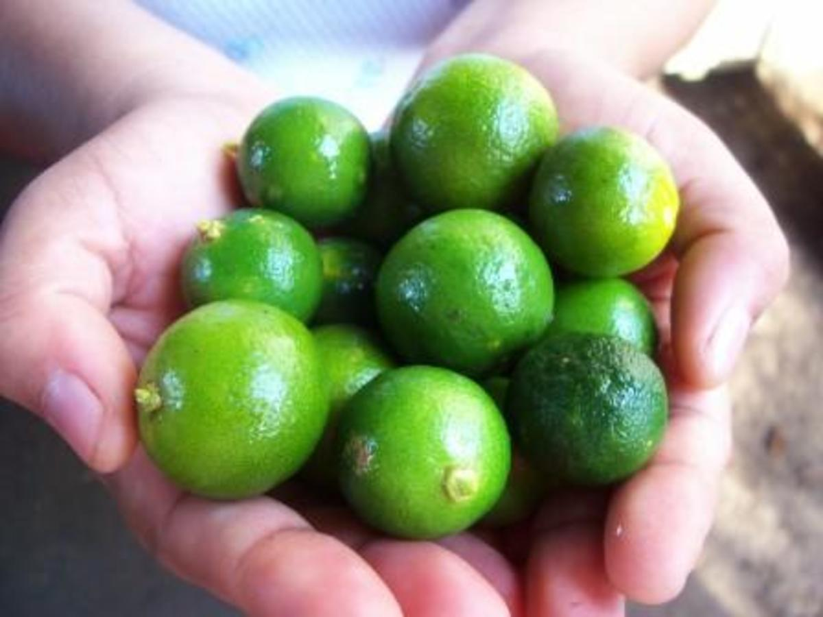 Health Benefits and Other Uses of Calamansi