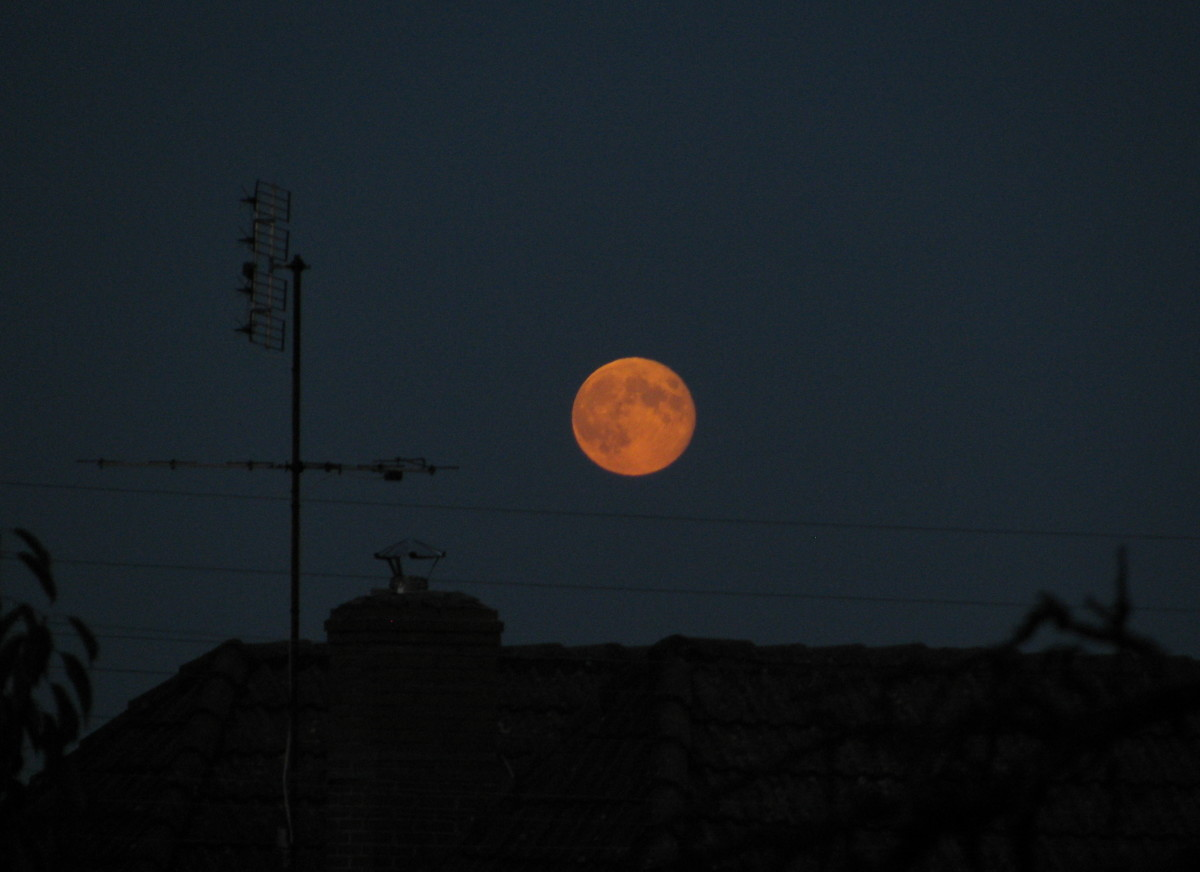 Harvest Moon looks down on our garden