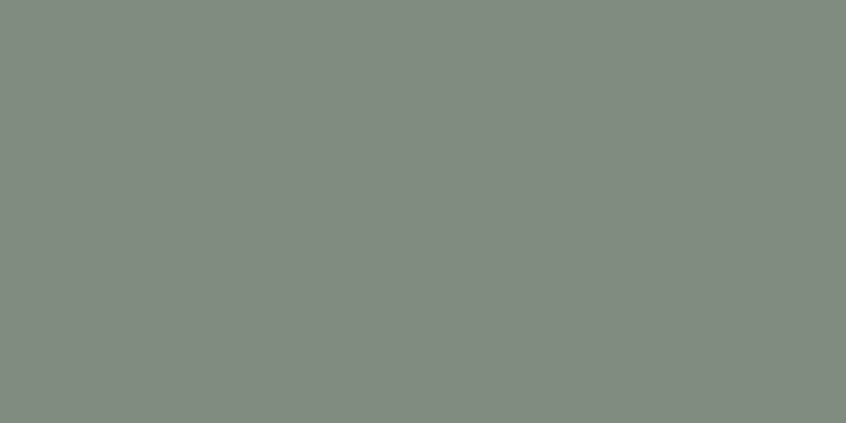 GREENISH GREY 50%(R) : 55%(G) : 50%(B)