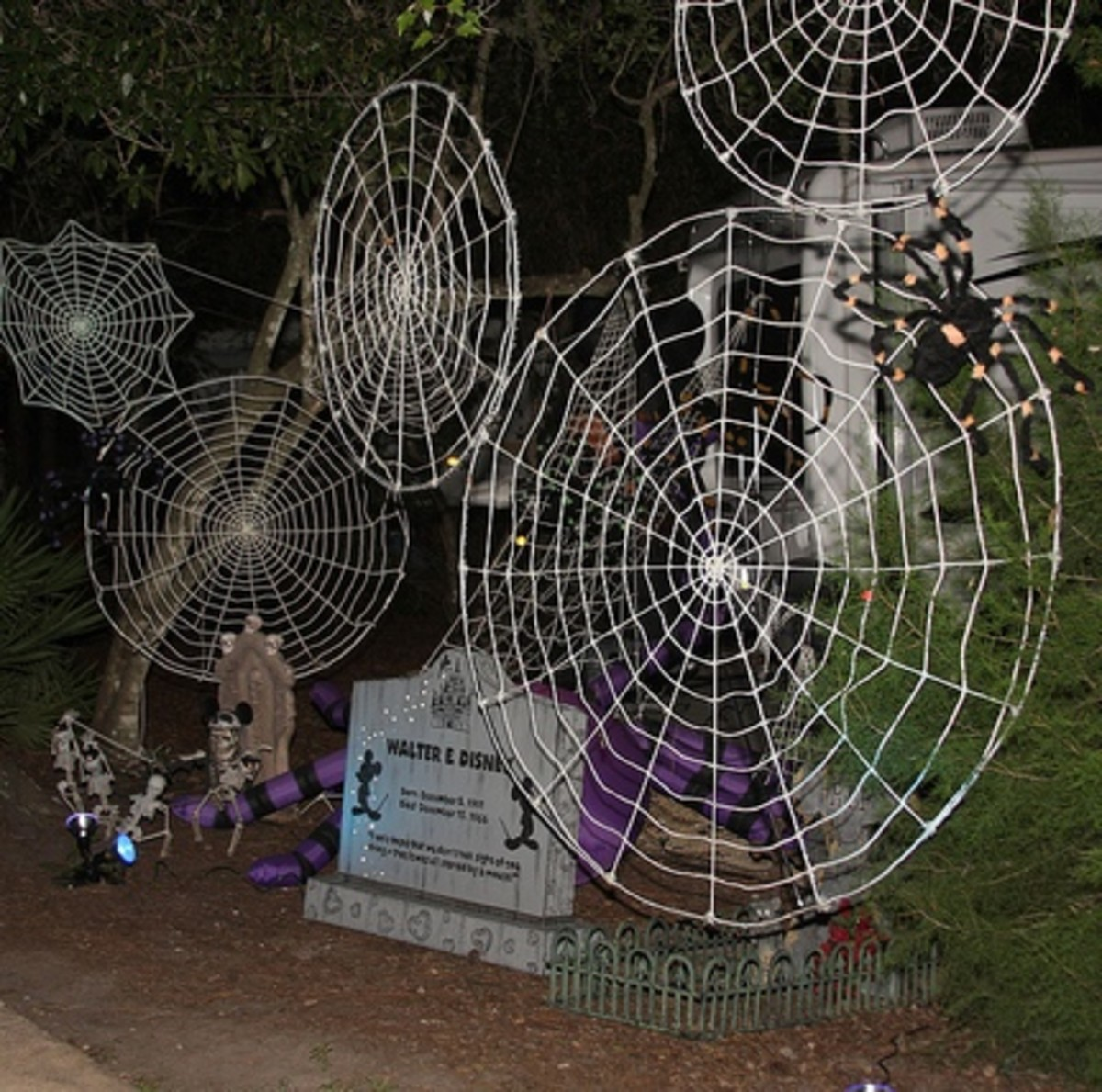 Spiderwebs create a not-too-scary eerie image of your yard at Halloween.
