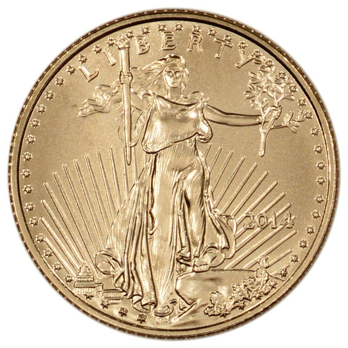 2014American Gold Eagle Coin Gift – Front