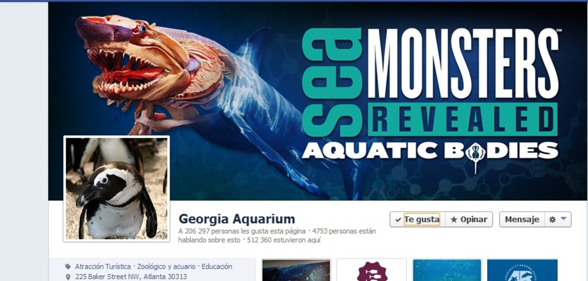 Like Georgia Aquarium on facebook and get some promotional discounts