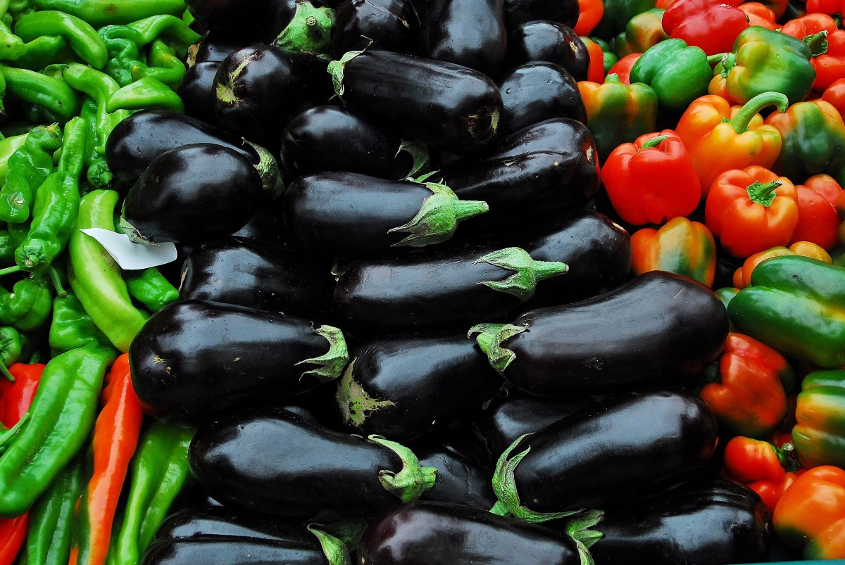 Aubergine and Mixed Peppers
