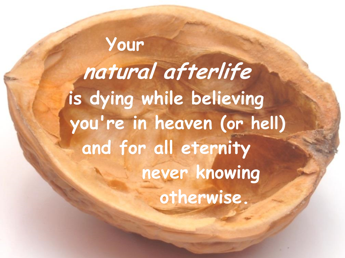 In a nutshell, a simple description of your natural afterlife