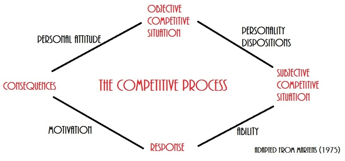 Martens Competitive Process Schematic