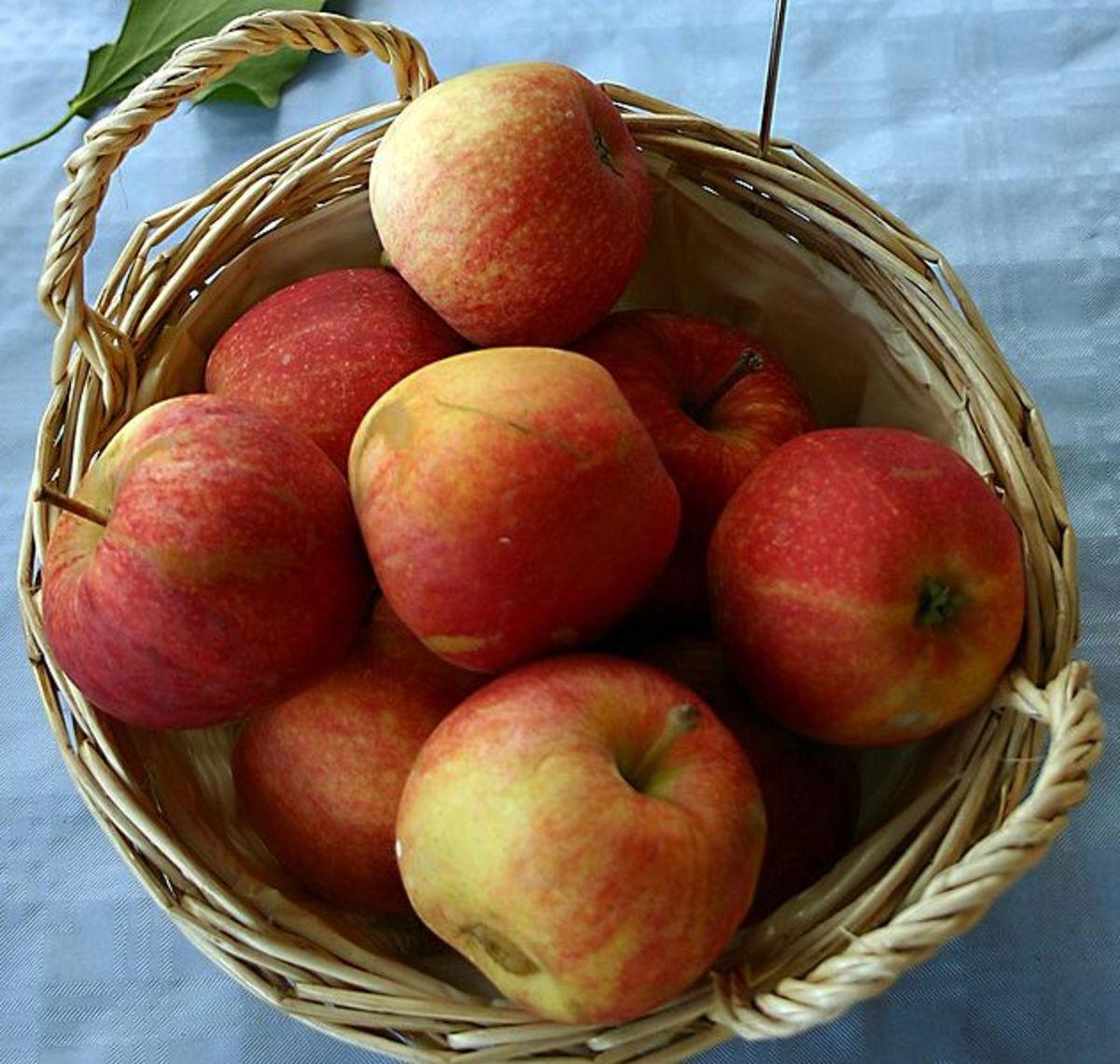 Gala Apples  Photo by: Sven Teschke