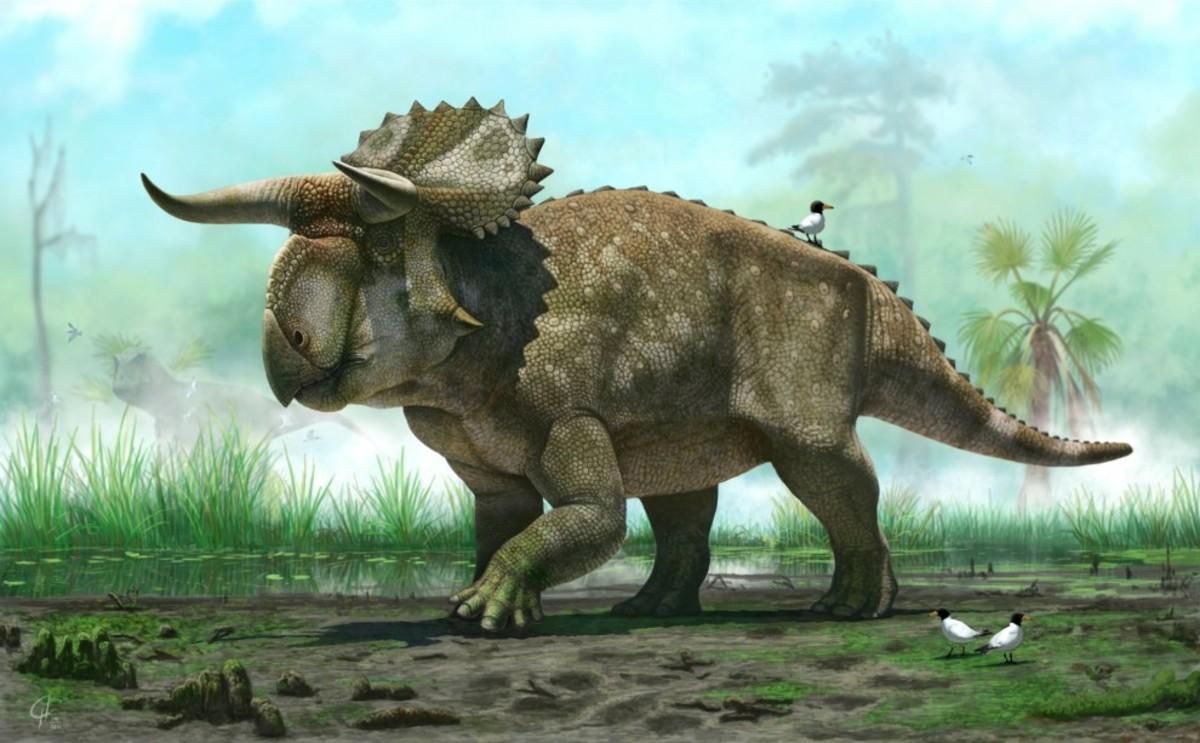 Nasutoceratops as depicted by Andrey Atuchin.