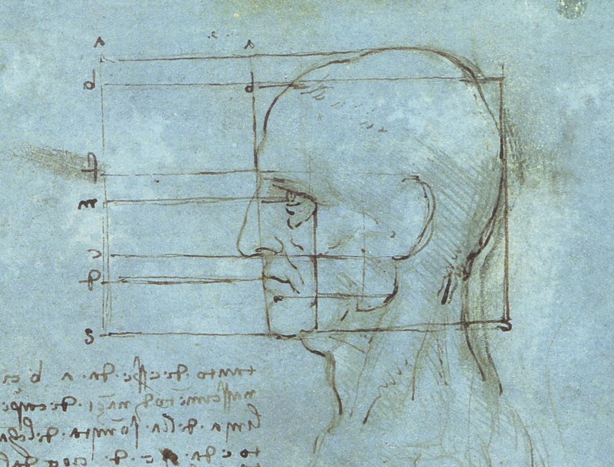 This is a sketch with the proportions of the human head.  It was drawn in the same time frame (1488-1489) than the skull sketches.