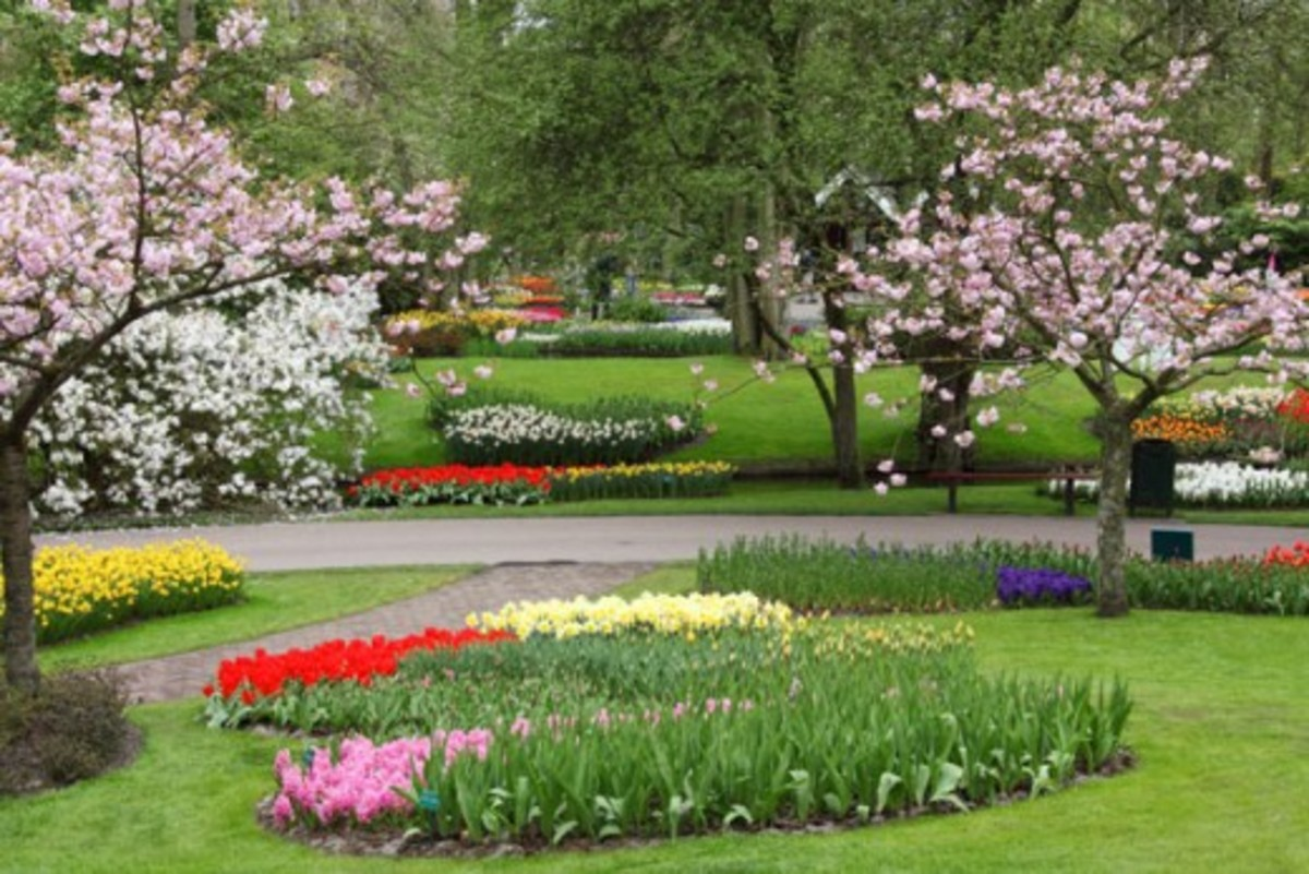 Spring in Keukenhof Garden of Europe, the Netherlands