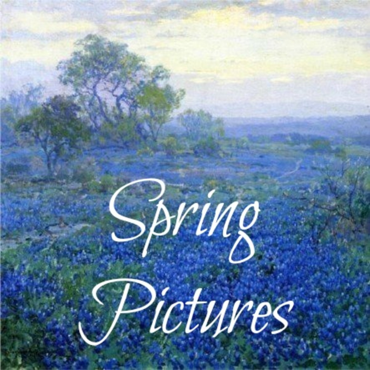 SPRING PICTURES: 200 Best Pictures, Free Images and Big Photos
