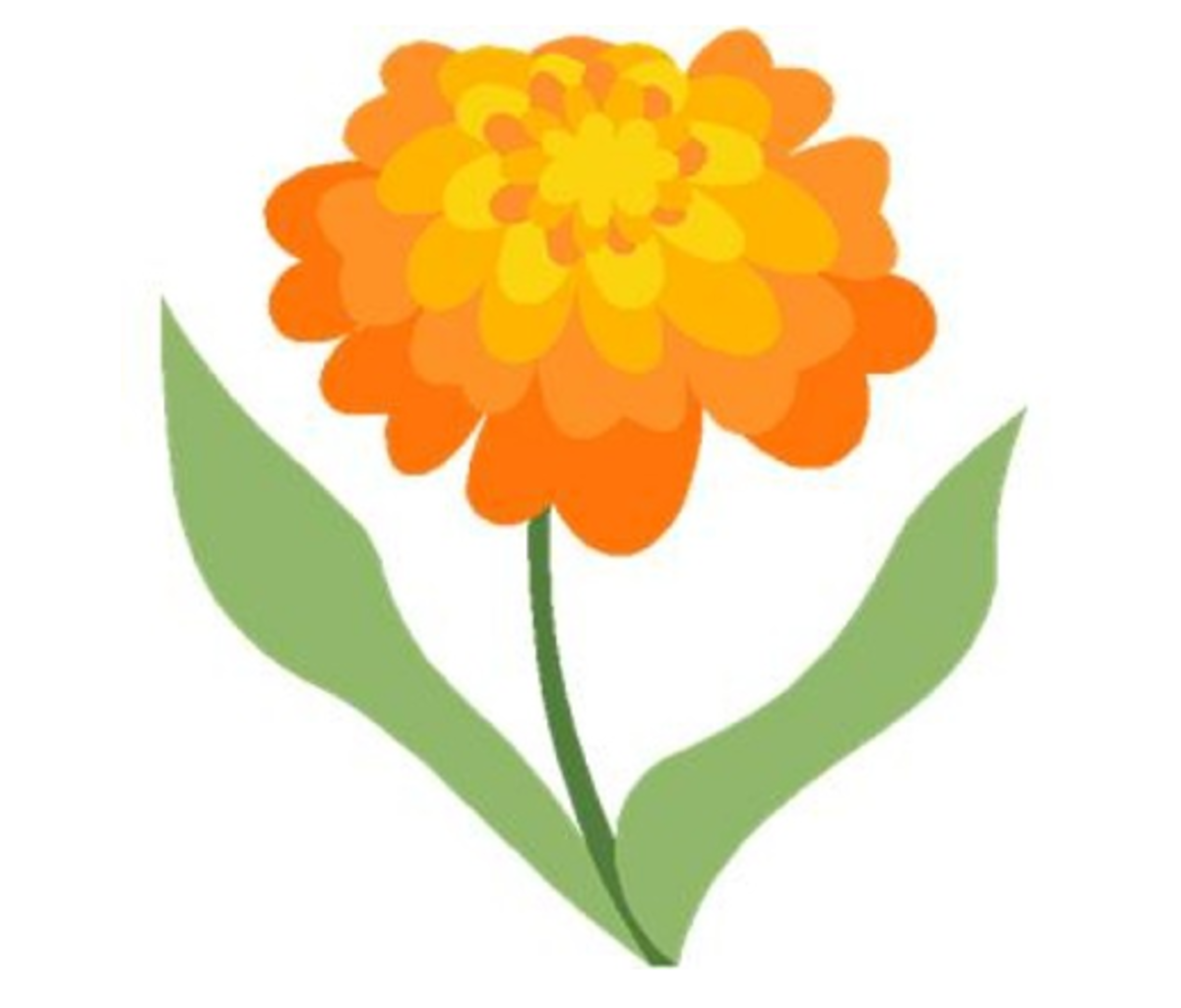 Orange Flower Zinnia