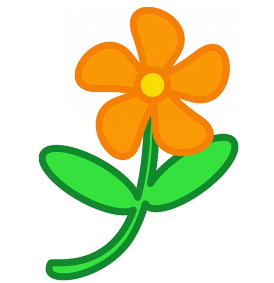 Orange Flower with Five Petals