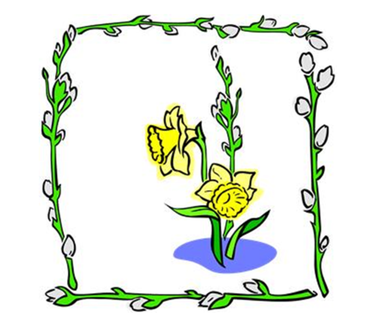 Two Daffodils in a Frame of Flower Buds