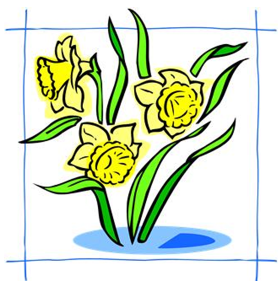 Three Daffodils in Blue Frame