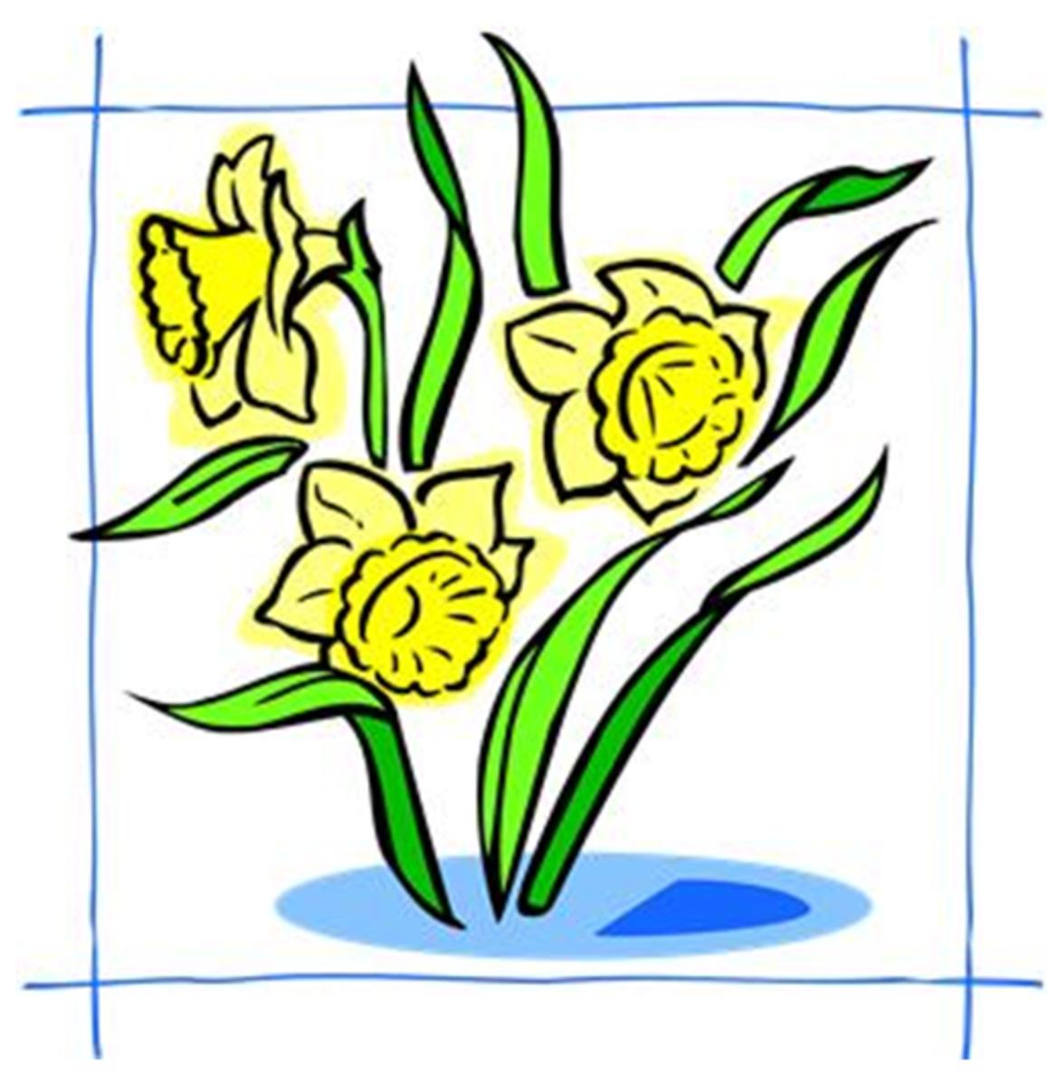 Three Daffodils in Blue Frame
