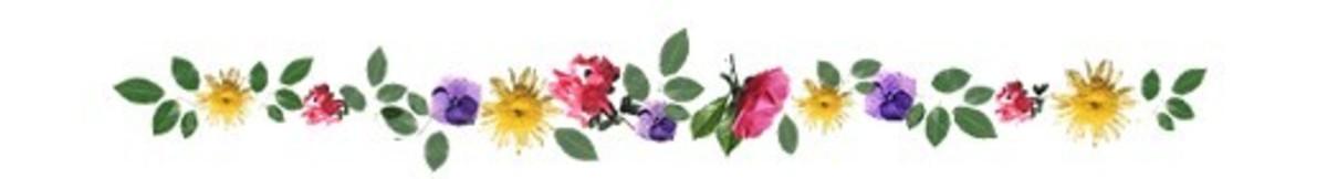 flower-clip-art