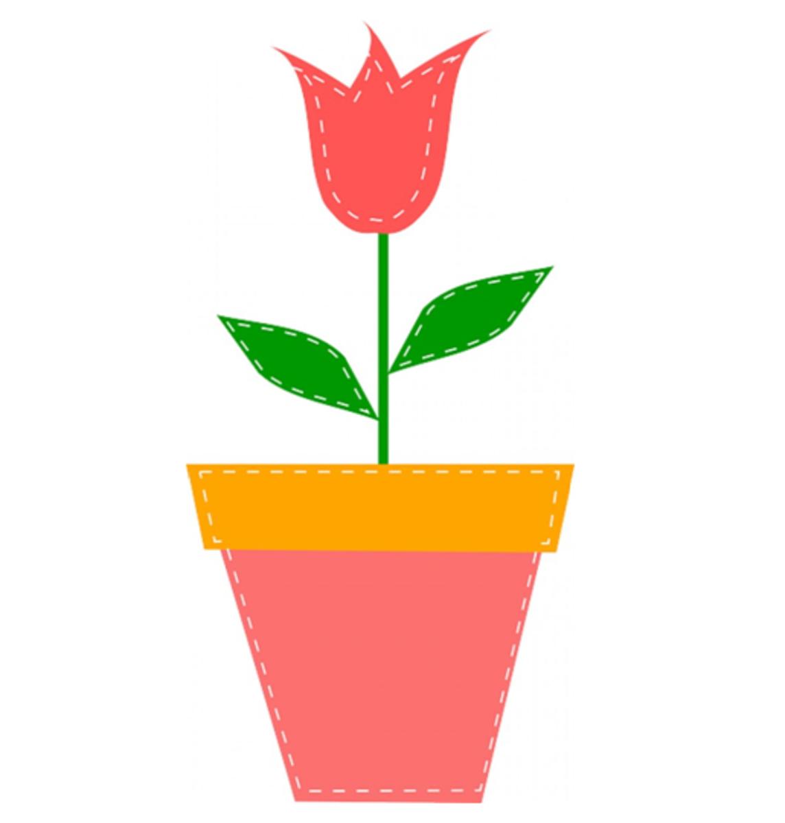 Pink Tulip in Pot