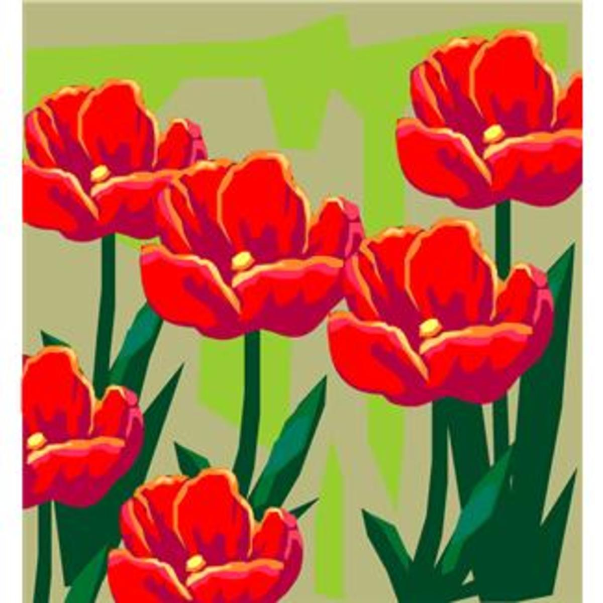 Large Red Tulips